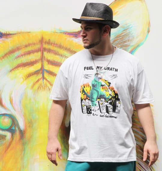 大きいサイズ メンズ David&Goliath 半袖 Tシャツ 半袖Tシャツ ホワイト 1168-5237-1 3L 4L 5L 6L