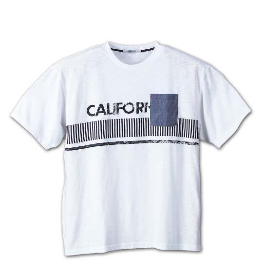 大きいサイズ メンズ Free gate スラブ 天竺 パネル 切替 半袖 Tシャツ 半袖Tシャツ オフホワイト 1158-6540-1 3L 4L 5L 6L 8L
