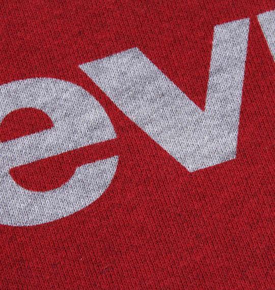 大きいサイズ メンズ Levi's プルパーカー モクグレー 1178-7650-1 2XL 3XL