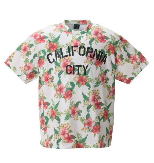 大きいサイズ メンズ SHELTY ボタニカル 総柄 プリント 半袖 Tシャツ 半袖Tシャツ オフホワイト 1158-8511-1 3L 4L 5L 6L 8L