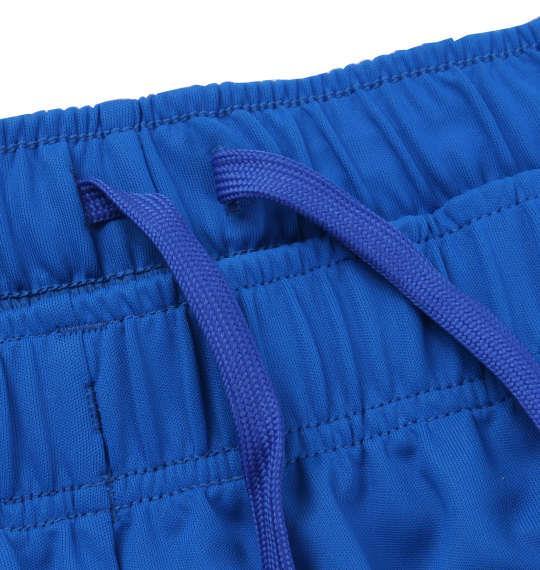 大きいサイズ メンズ DESCENTE スムース ニット ハーフパンツ ドライメッシュ ニット ハーフパンツ ボトムス ズボン パンツ 短パン ブルー 1174-8220-3 3L 4L 5L 6L