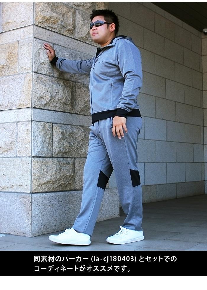 大きいサイズ メンズ LINKATION セットアップ ポンチ スポーツパンツ アスレジャー スポーツウェア la-swp180401