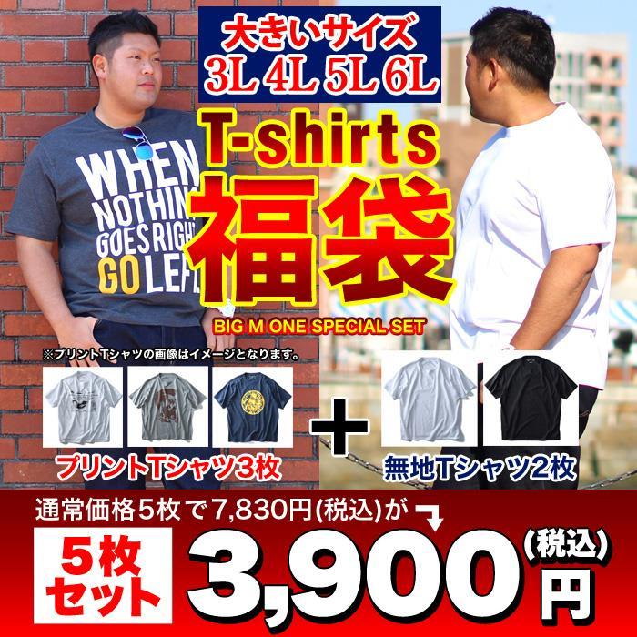 大きいサイズ メンズ DANIEL DODD 半袖 Tシャツ 半袖Tシャツ 5枚セット 福袋 azt-t5