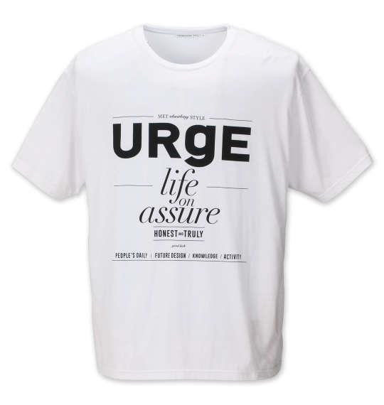 大きいサイズ メンズ launching pad AB 杢 スラブ ミニ 裏毛 フルジップパーカー + 半袖Tシャツ セット アンサンブル グレー杢 × ホワイト 1158-9110-1 3L 4L 5L 6L