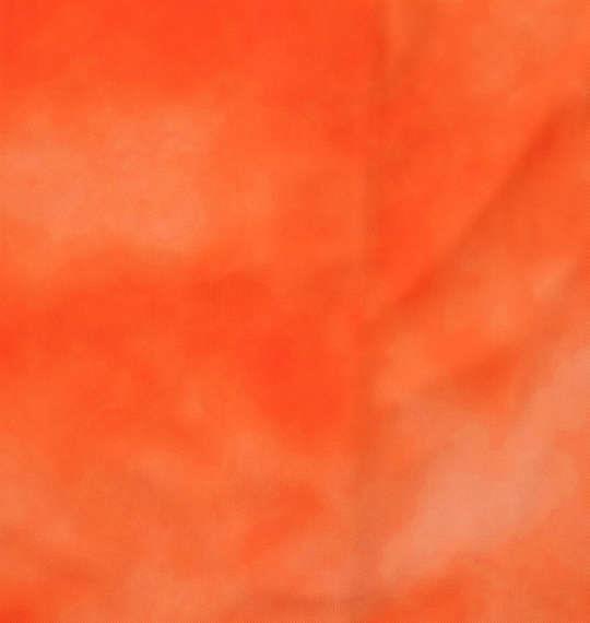 大きいサイズ メンズ OCEAN PACIFIC 半袖 フルジップ パーカー ラッシュガード オレンジ 1168-9220-1 3L 4L 5L 6L 8L