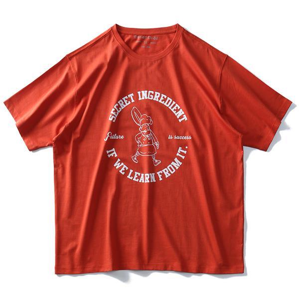 大きいサイズ メンズ DANIEL DODD オーガニック プリント 半袖 Tシャツ SECRET INGREDIENT azt-190241