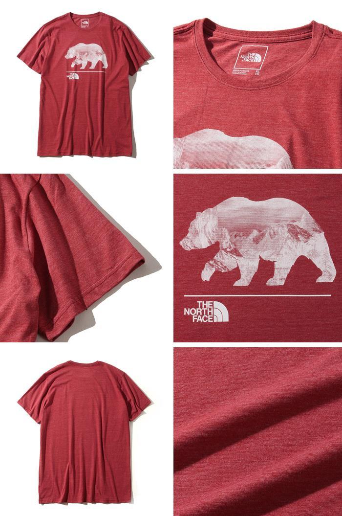 ブランドセール 大きいサイズ メンズ THE NORTH FACE ザ ノース フェイス プリント 半袖 Tシャツ USA直輸入 nf0a3x6thjk