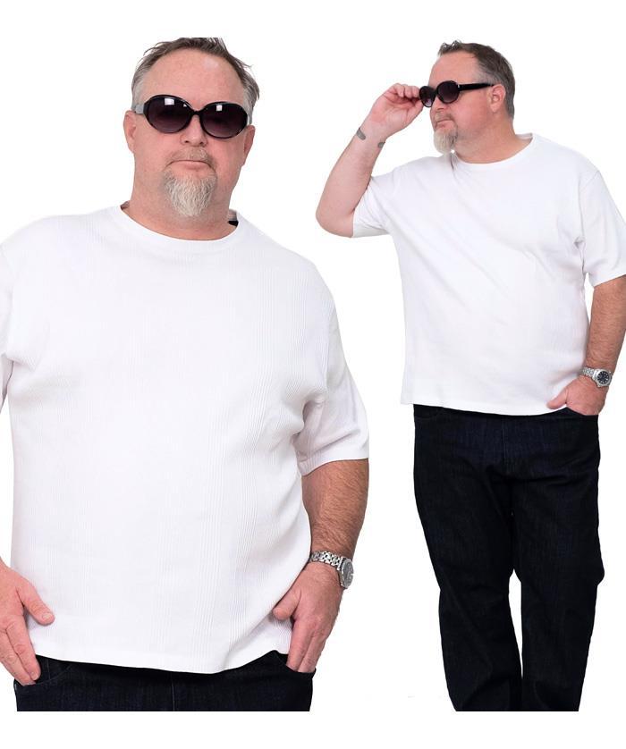 大きいサイズ メンズ DANIEL DODD リブ クルーネック 半袖 Tシャツ オーガニックコットン 春夏新作 azt-200269 緊急セール