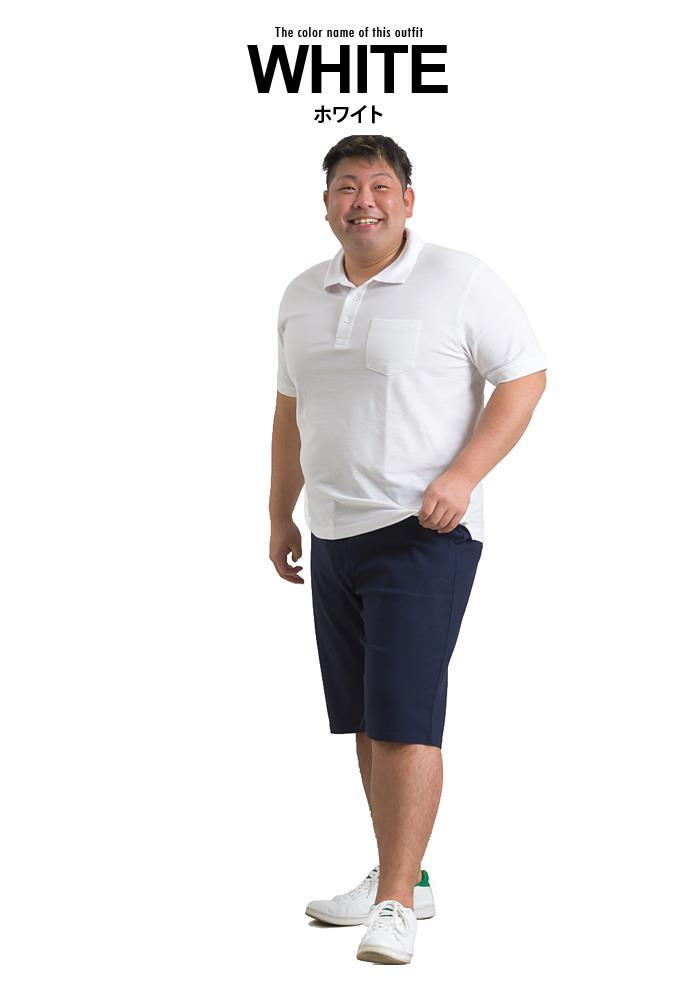 まとめ割 大きいサイズ メンズ DANIEL DODD オーガニック 吸汗速乾 鹿の子 半袖 ポロシャツ azpr-009010