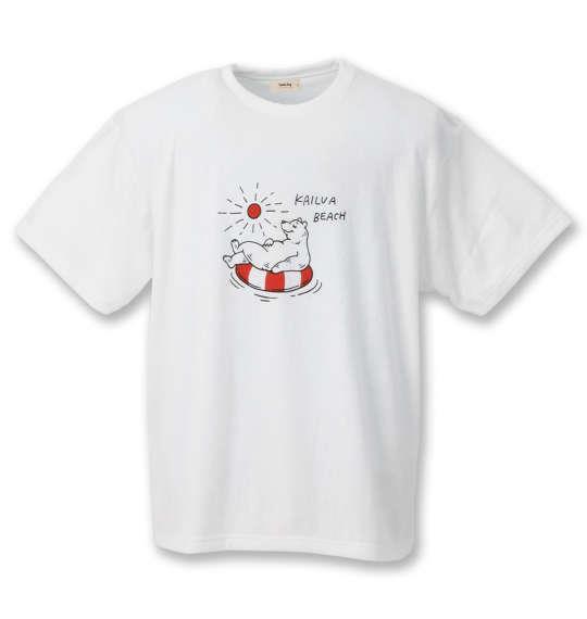 大きいサイズ メンズ kailua Bay ナノテック加工 パイル 半袖 Tシャツ オフホワイト 1258-0256-1 3L 4L 5L 6L