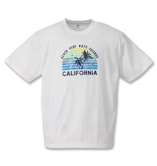 大きいサイズ メンズ OCEAN PACIFIC プリント 半袖 Tシャツ ホワイト 1268-0261-1 3L 4L 5L 6L 8L