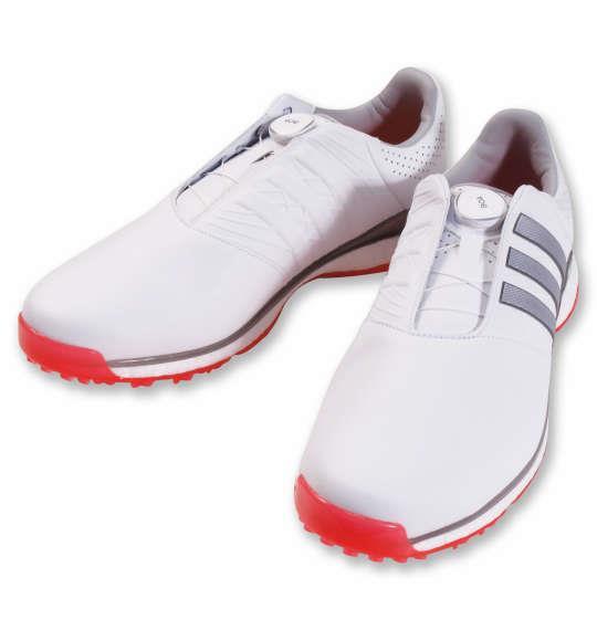 大きいサイズ メンズ adidas golf ゴルフシューズ ツアー360XT-SLボア2 ホワイト × シルバーメタリック × スカーレッド 1240-0301-1 30 31.5