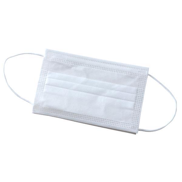 【冬最終】個別包装 3層構造 不織布 マスク 50枚入 女性・子供用サイズ m0052002