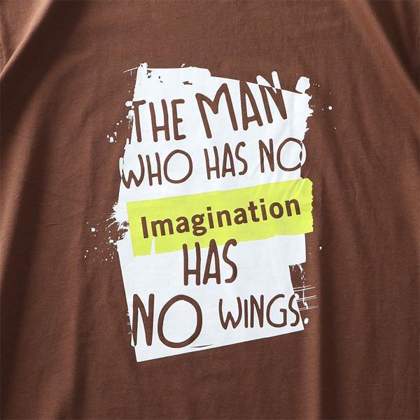 大きいサイズ メンズ DANIEL DODD オーガニックコットン プリント ロング Tシャツ IMAGINATION 春夏新作 azt-210103