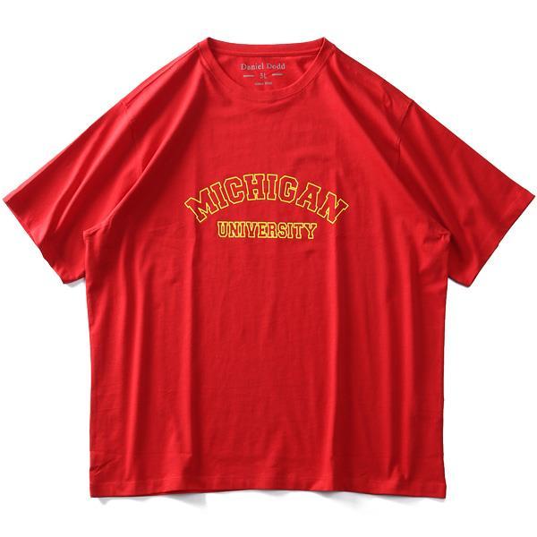 大きいサイズ メンズ DANIEL DODD オーガニックコットン プリント 半袖 Tシャツ MICHIGAN 春夏新作 azt-210219