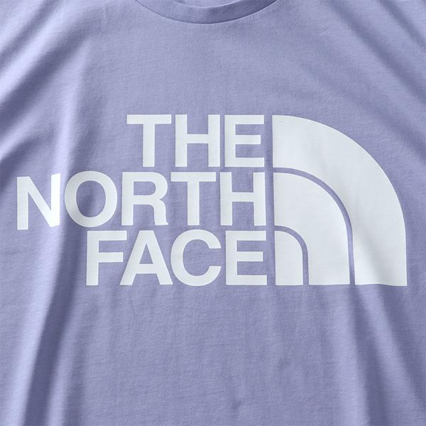 大きいサイズ メンズ THE NORTH FACE ザ ノース フェイス プリント 半袖 Tシャツ STANDARD SS TEE USA直輸入 nf0a4m7x